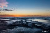 [Mona Vale Sunrise 4]
