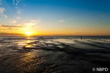 [Mona Vale Sunrise 5]